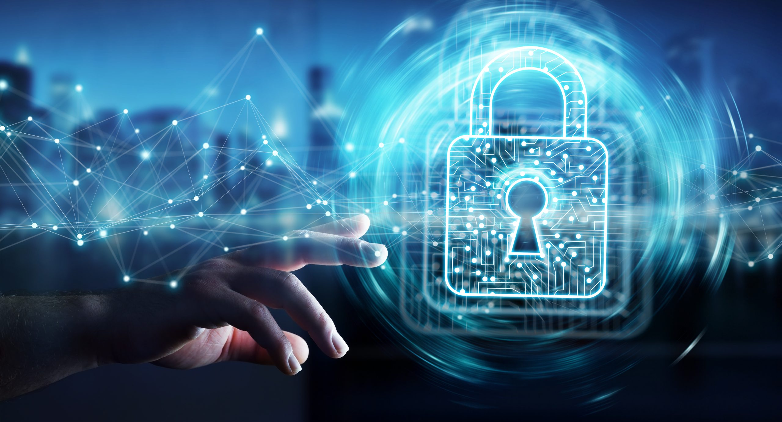 Privacy and Data Protection in Federal Technology Consulting