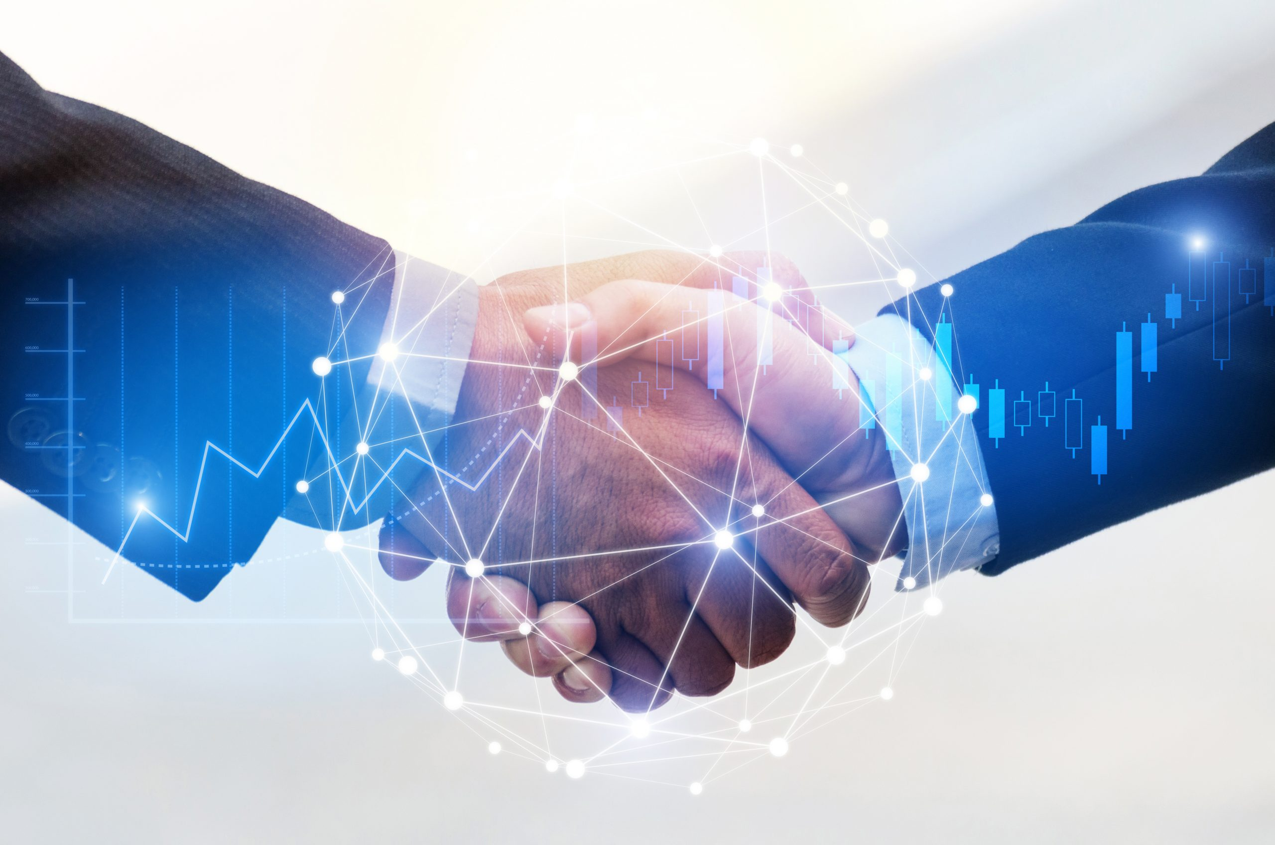 Partnerships and Affiliations in Federal Tech Consulting
